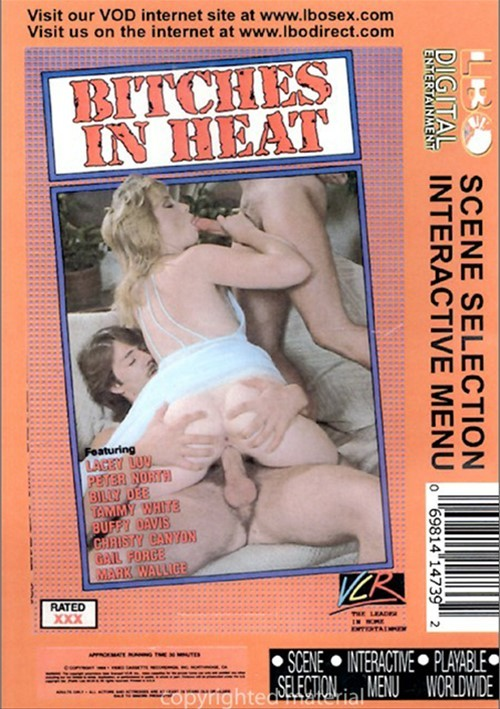 Bitches In Heat Vol. 16