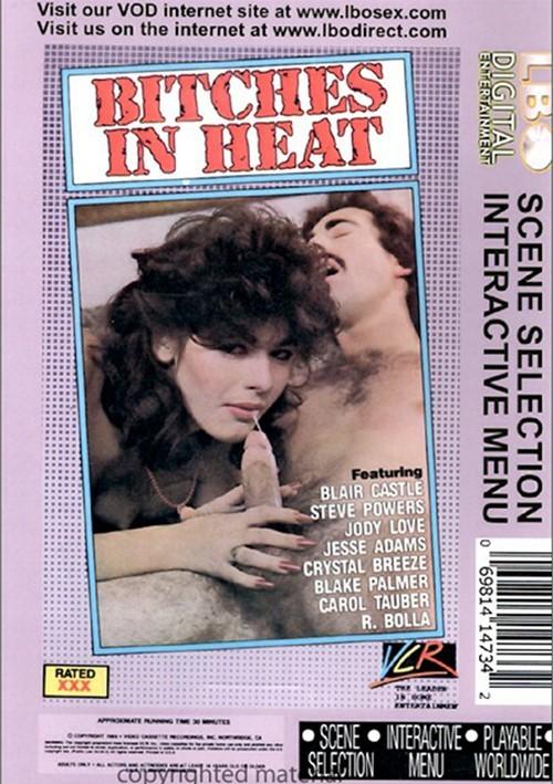 Bitches In Heat Vol. 10